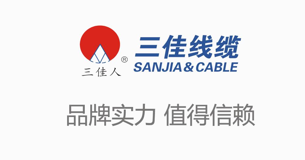 三佳电线电缆荣获2009湖北名牌产品称号